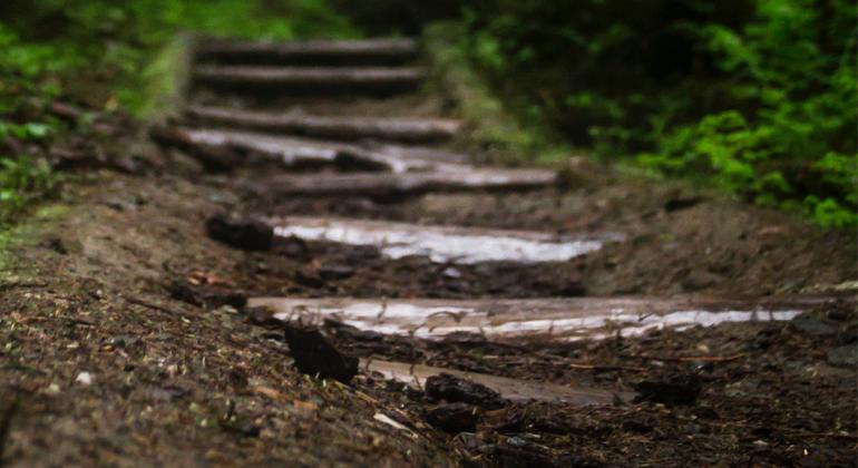 Equipamentos de trilhas