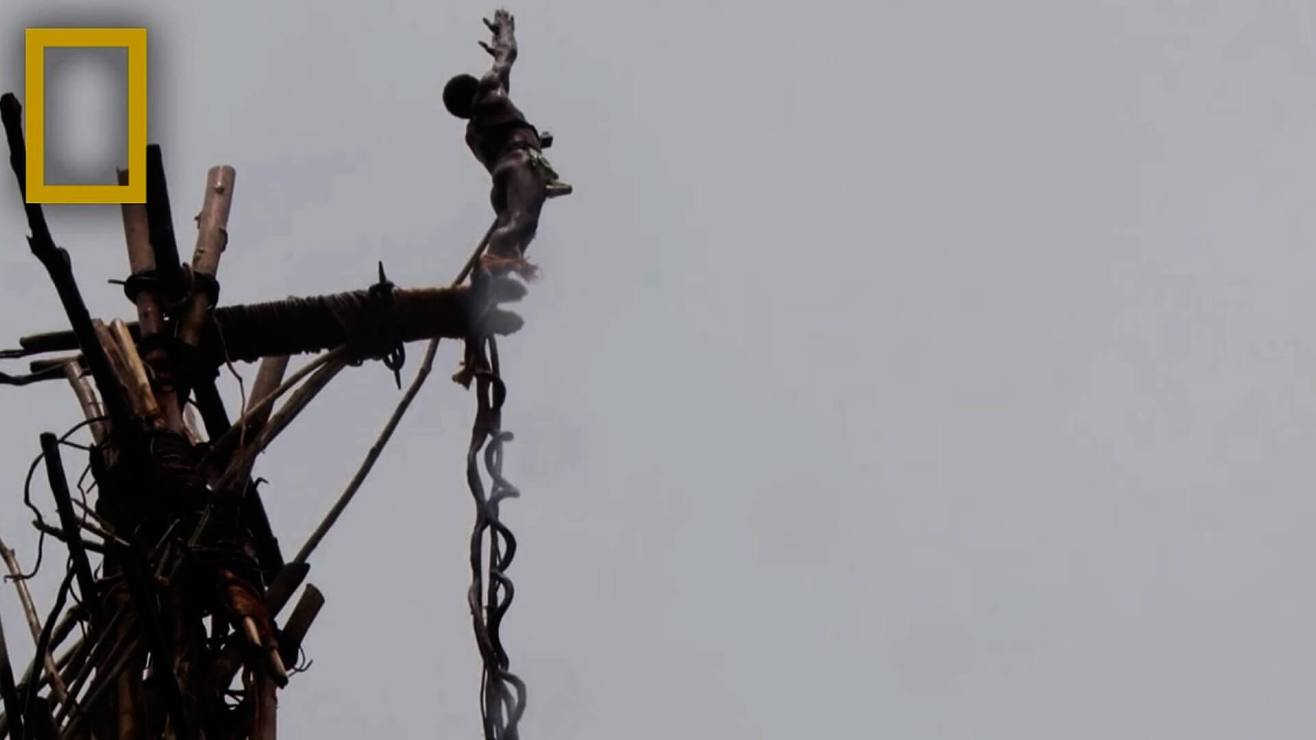 Imagem de um homem que pertence a tribo Bunlap saltando de uma estrutura feita de madeira e com cipós amarrados em seus pés. Este é um ritual da tribo.