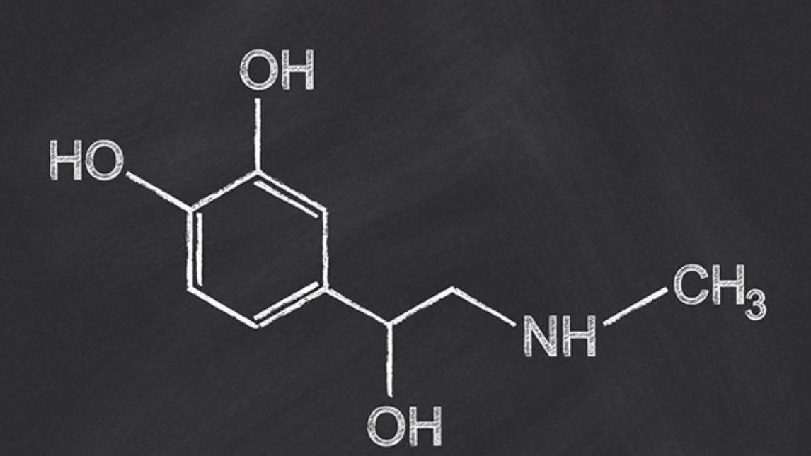 Na imagem há a fórmula estrutural da adrenalina.