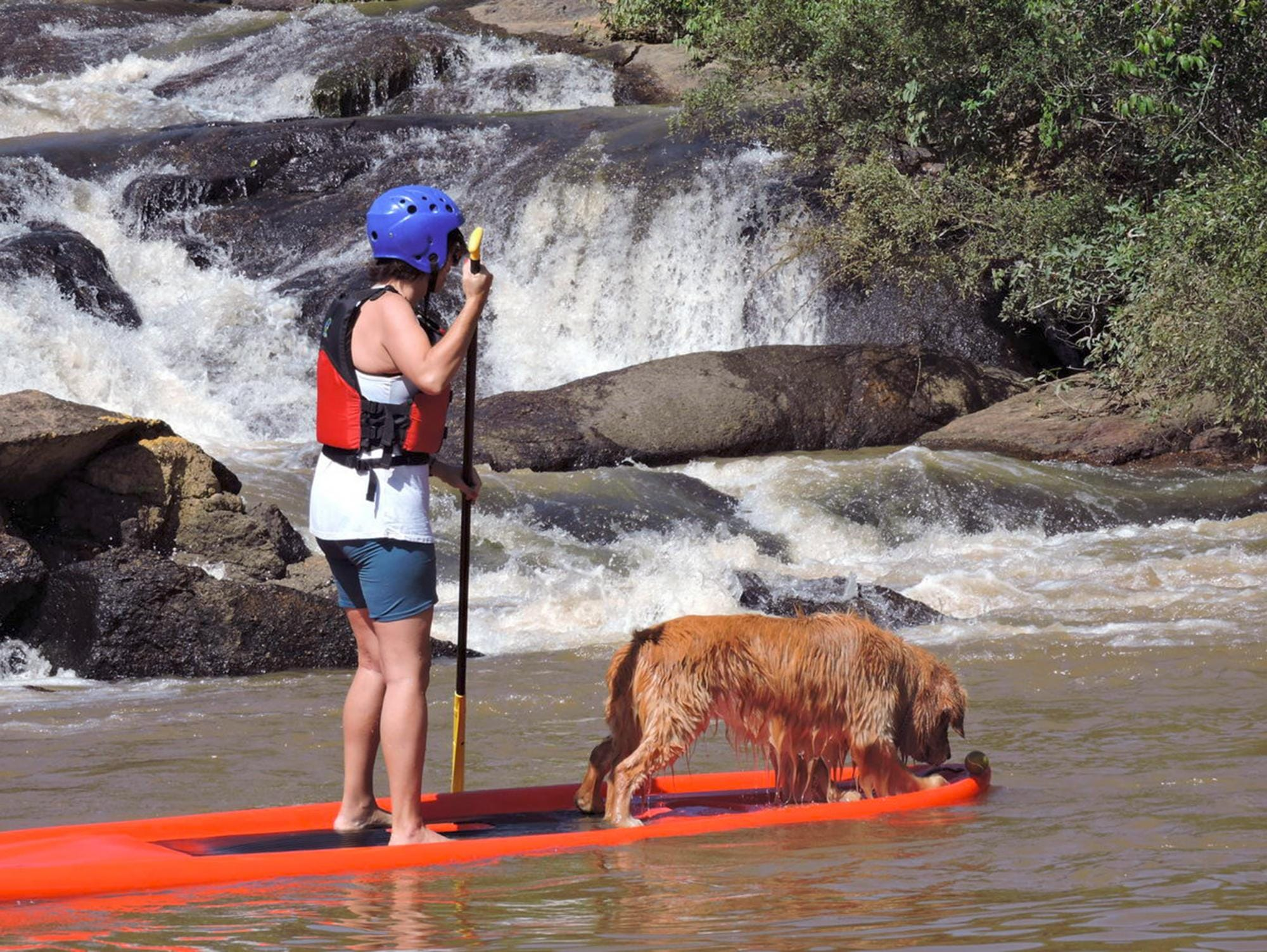 Na imagem, uma moça está em pé em uma prancha de stand up paddle junto de seu cachorro. Ela está na parte de trás da prancha, enquanto o animal vai na parte da frente.