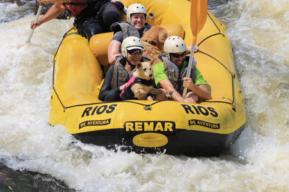 Na imagem, 4 pessoas e 2 cachorros descem uma corredeira de água sobre um bote de rafting.