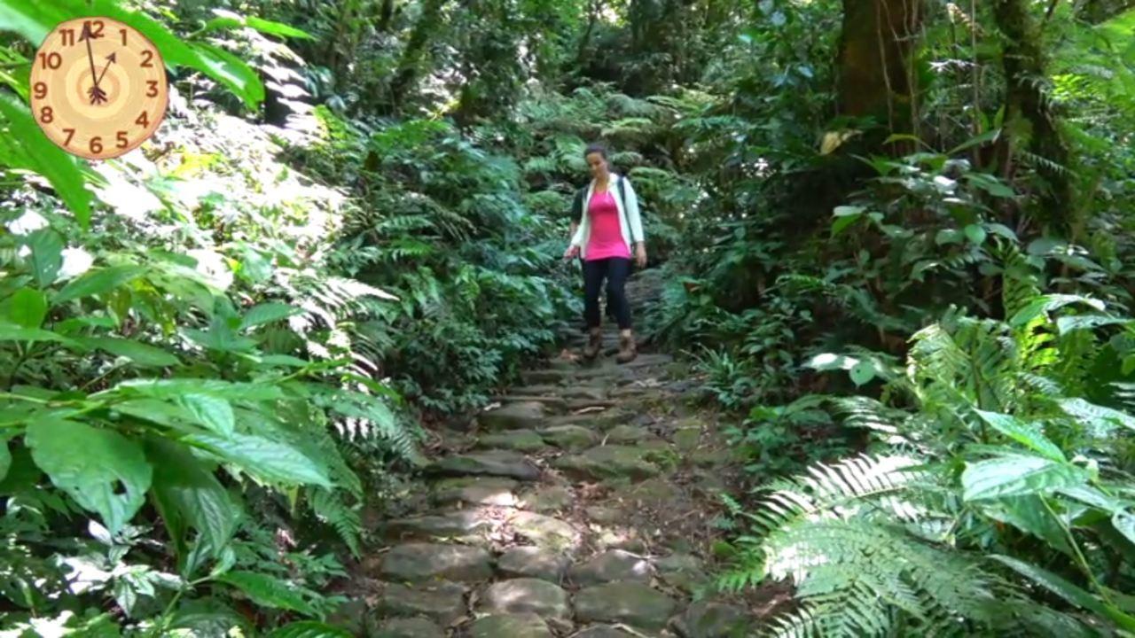 Na imagem, uma moca caminha na trilha do Caminho do Itupava. A trilha é montada sobre pedras, em volta desse caminho, tem muitas árvores.