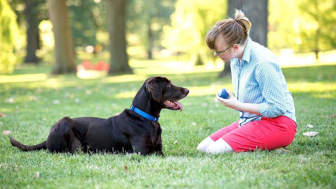Na imagem, um cachorro e sua dona descansam sobre a grama.